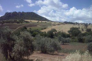 Vloeiiende velden en valleien onderweg naar Olvera.